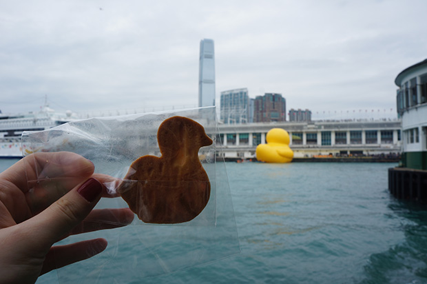 rubber-duck-hong-kong_20